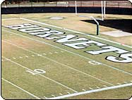 High School Letters Stencil for football End zone