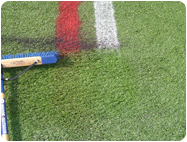 Paint remover artificial turf grass